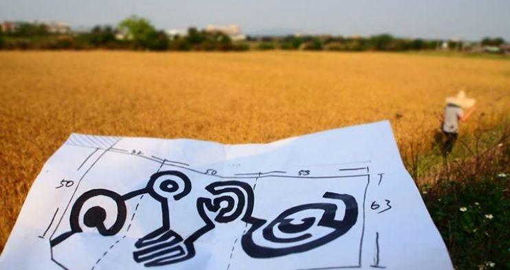 幸福果食 募資挑戰創作亞洲最大麥田圈